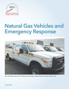 iREV Natural Gas Case Study_Page_01